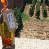 Aceite aromatizado con tomate