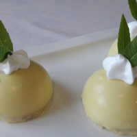 Miniatura de limón y manzana